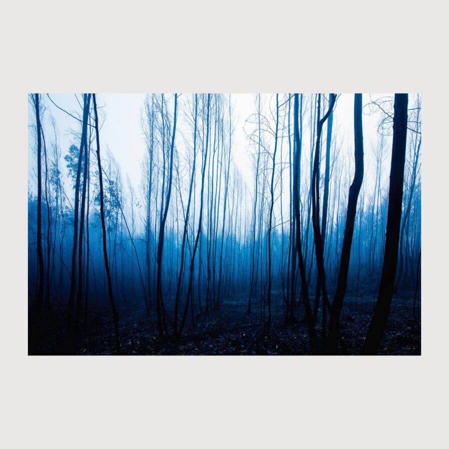Don't fade away de Alípio Padilha photography landscape