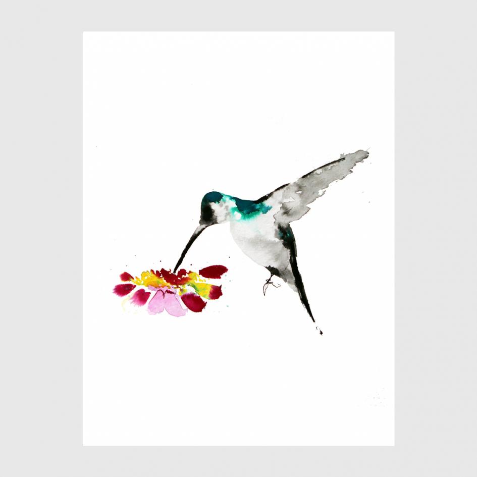 bird Beija-flor watercolor by Nina fraser