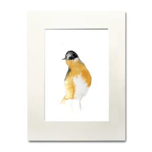 bird Tails of Summer aguarela Nina fraser