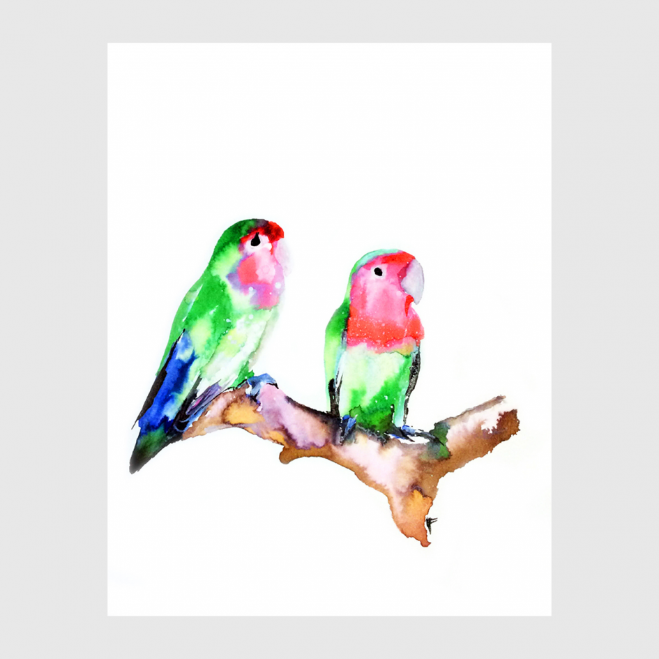 bird Love Birds watercolor by Nina fraser