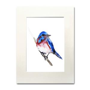 bird Every Now & Then aguarela Nina fraser
