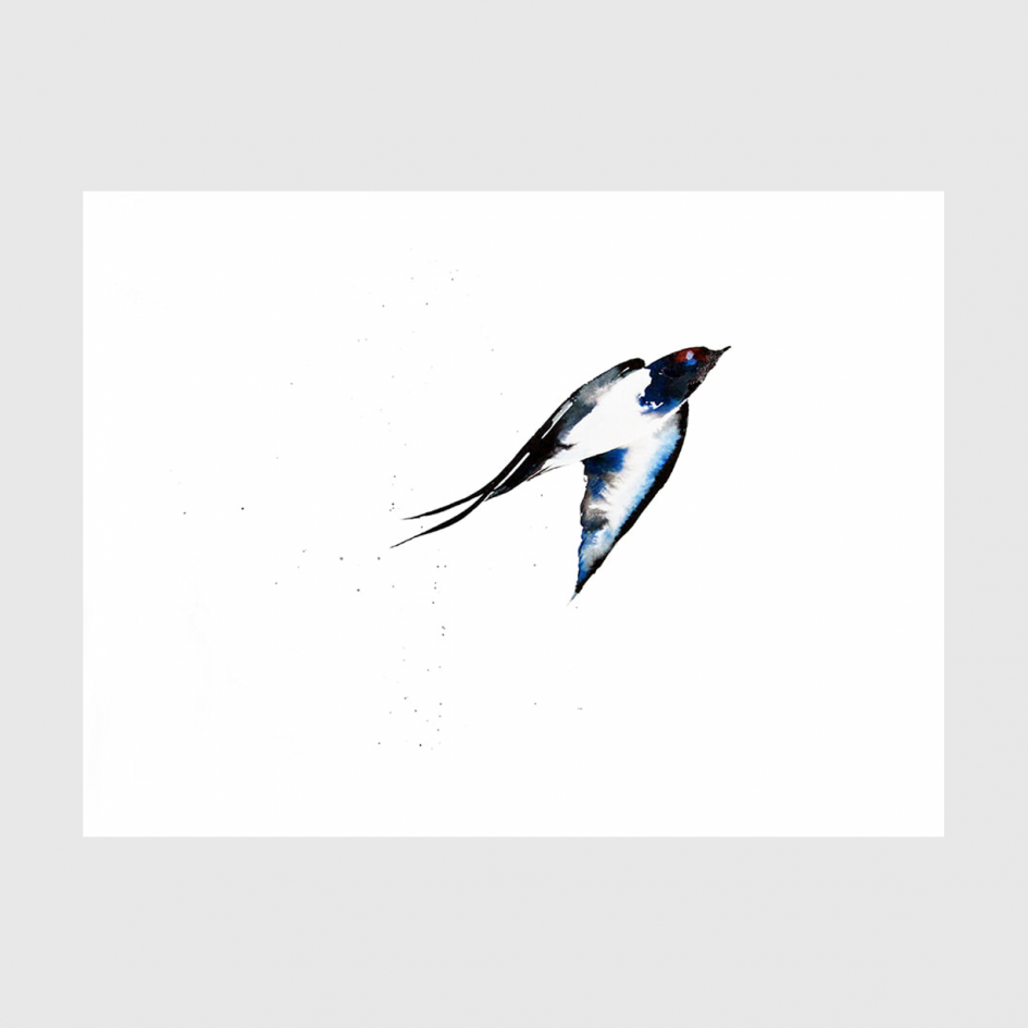 bird Swiftly watercolor by Nina fraser
