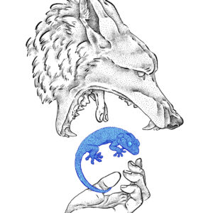Devorador, lobo, print de Sara feio