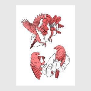 Pequenas Liberdades , pássaros e mãos de sara feio