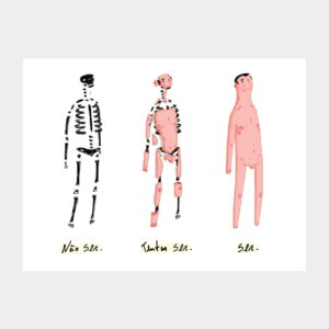 ilustração evolução do homem