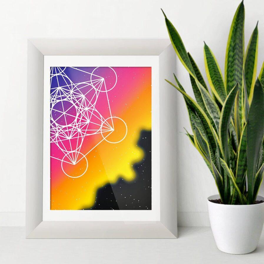 universe shapes plant