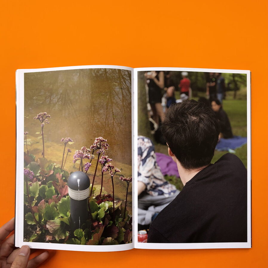 pictures pages