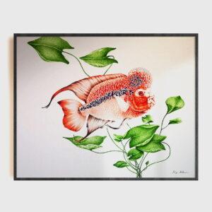 red fish highlight